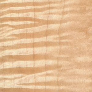 tiger maple wood sample